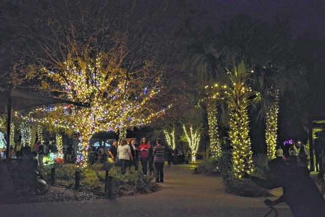 Lovely The Entry Plaza Twinkles With Lights.